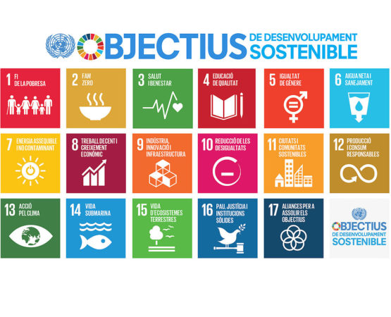 Dia Mundial d'Acció pels ODS / Global Day #Act4SDG